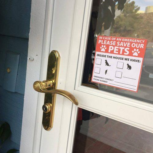 emergency dog sticker in window