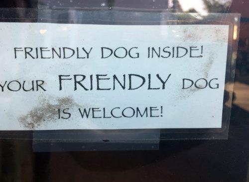 dog friendly flagstaff