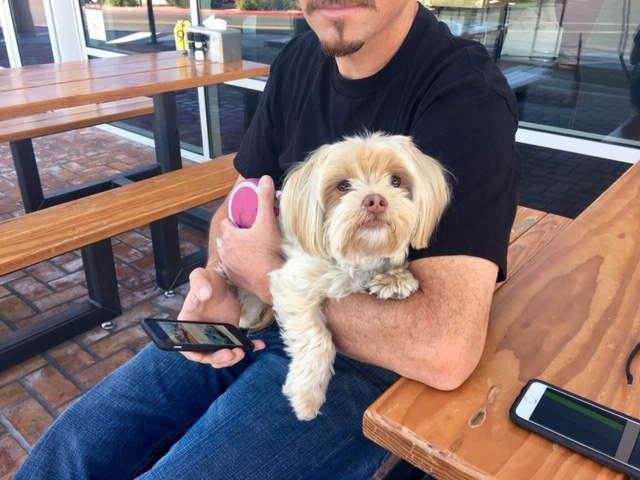 Dog-friendly: Hopdaddy in Phoenix