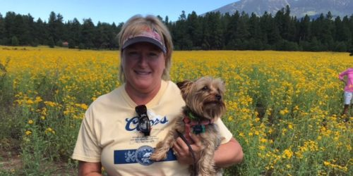 dog amid the flagstaff sunflowers